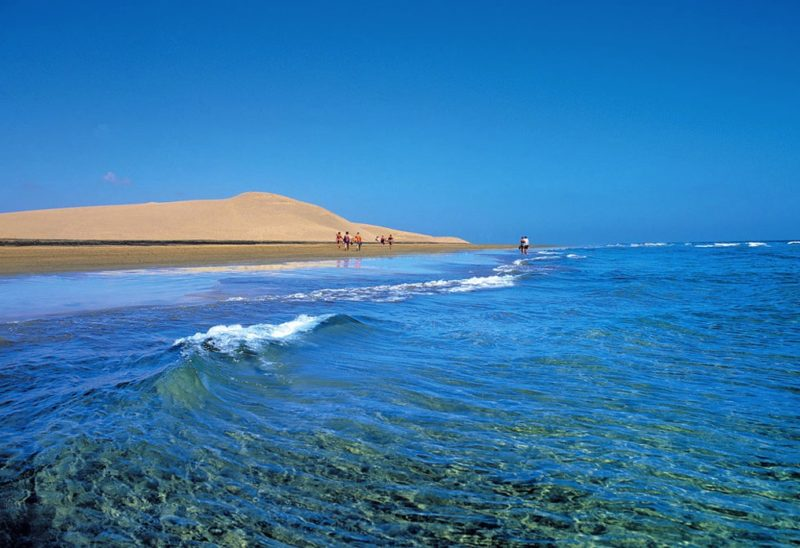 https://www.lascasascanarias.com/blog/2015/11/15/7-reasons-why-gran-canaria-is-perfect-for-everyone/
