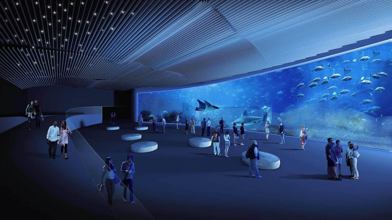 gran canaria new aquarium