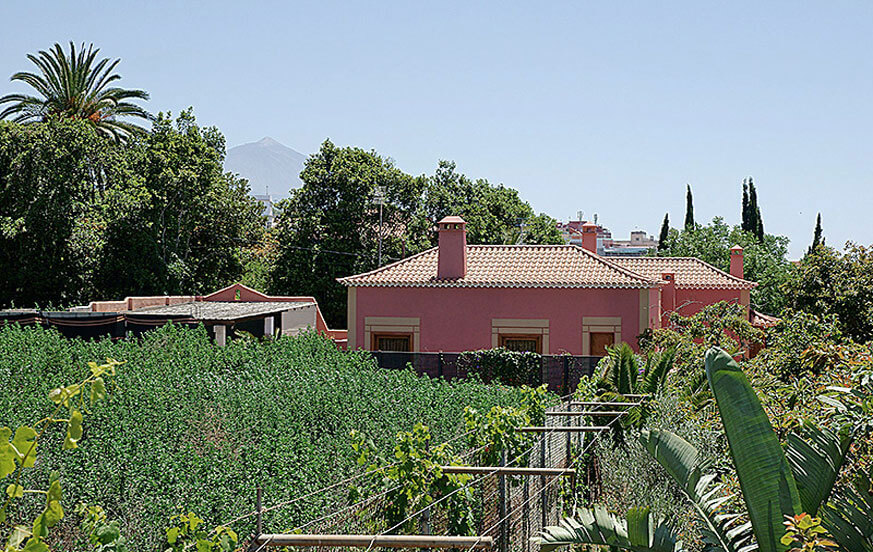 Holiday apartment in a quiet area of Tenerife with large outdoor areas and views towards the mountains