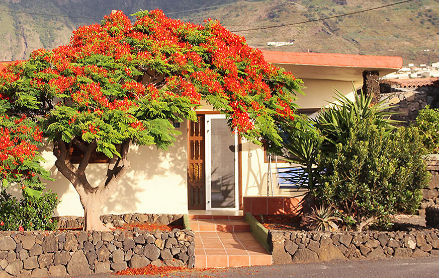 Authentic canarian style holiday home with jacuzzi and views to the sea and mountains