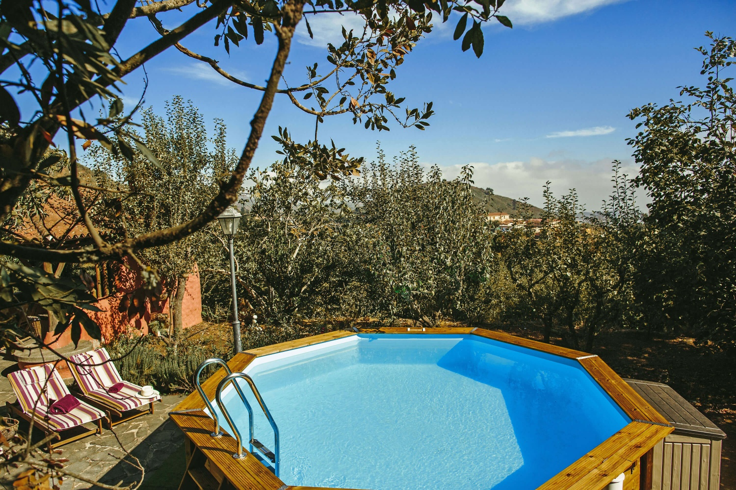 Luxurious country house with large gardens of fruit trees in the middle of the woods of Vega de San Mateo